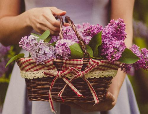 Bienvenido a Fontanillas floristería